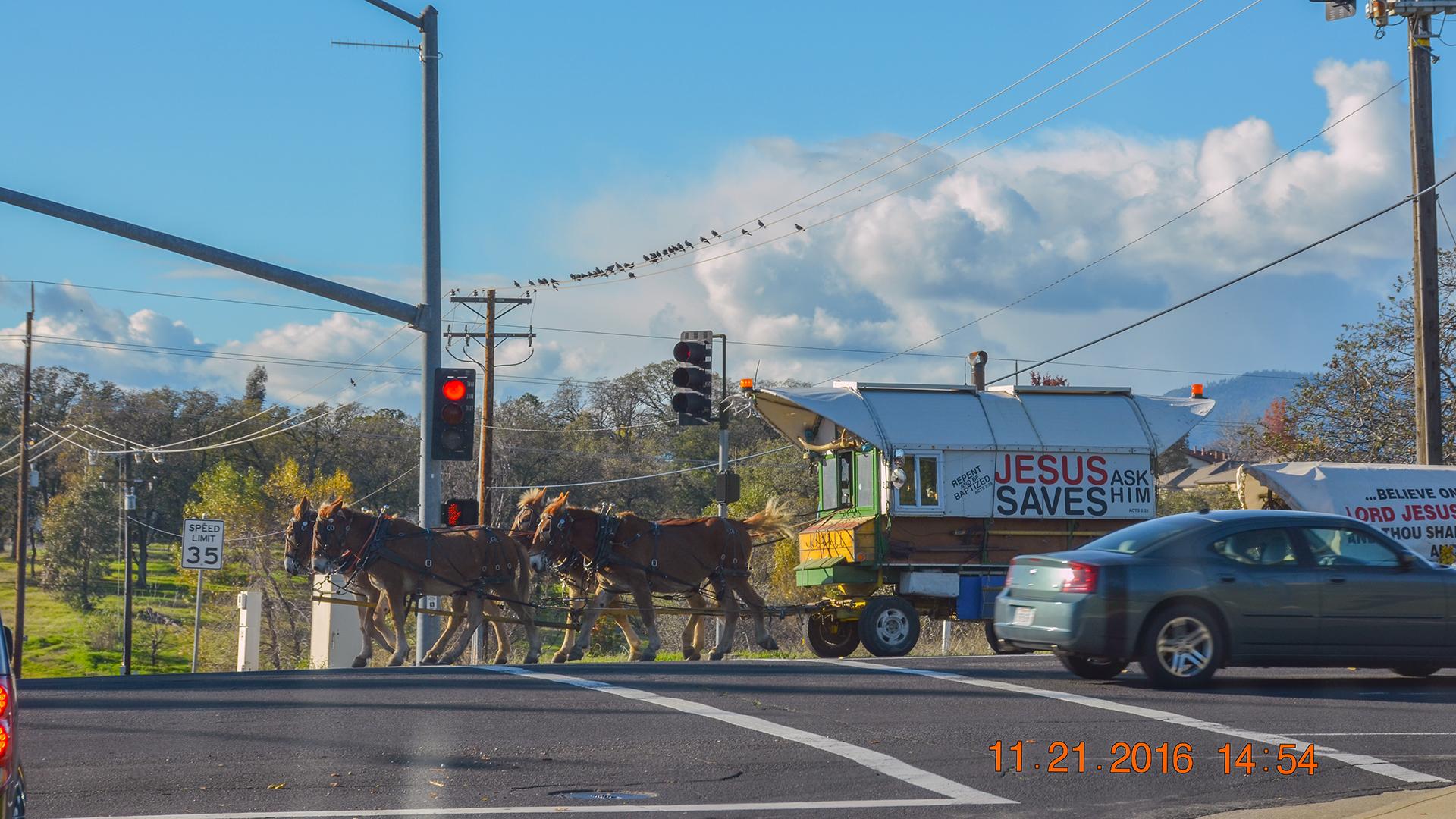horses-on-churn-creek-sm